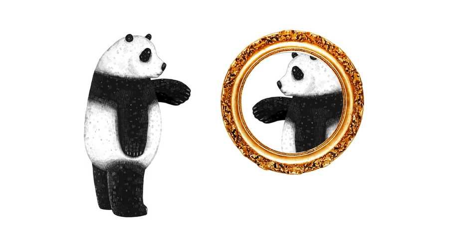 A white panda looking in the mirror