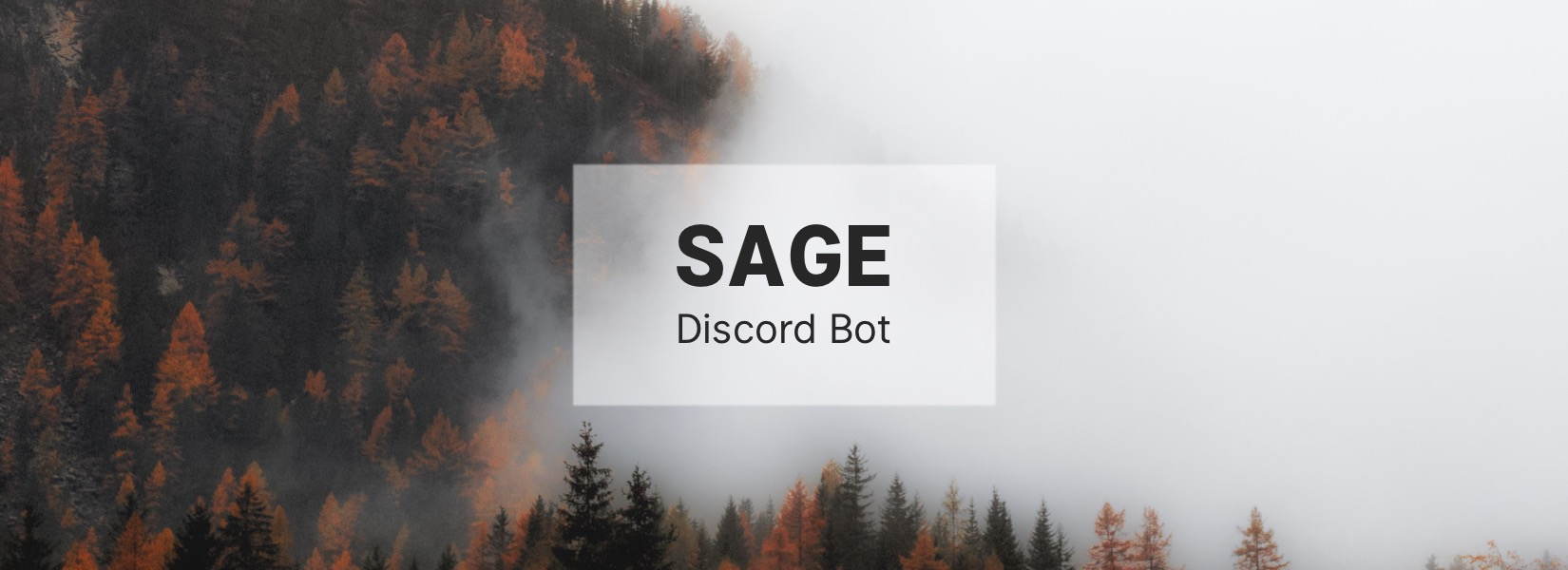 Announcing SAGE for Discord