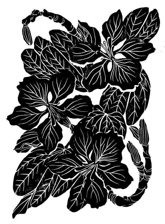 BAUHINIA, linocut print on paper, 2020.