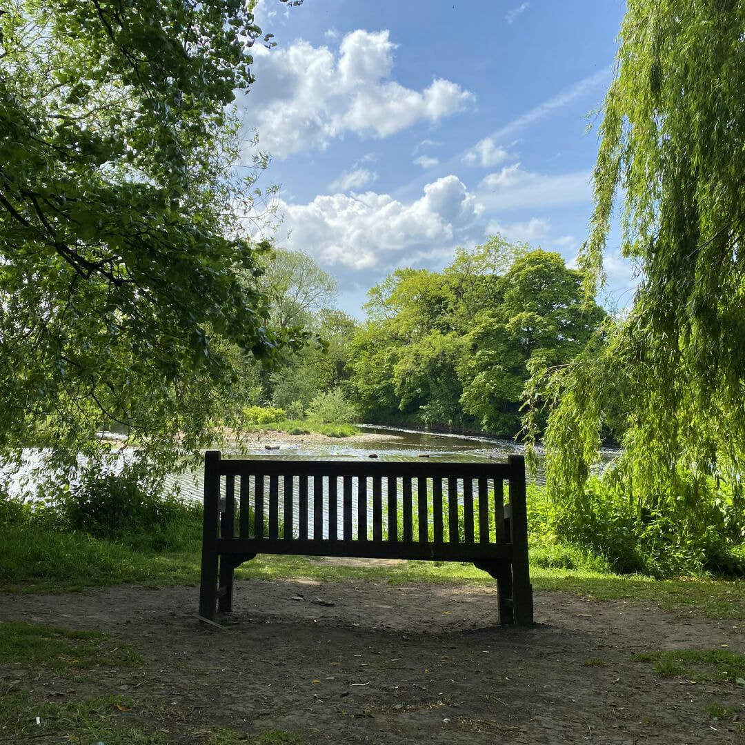 Kirkstall Abbey bench over River Aire