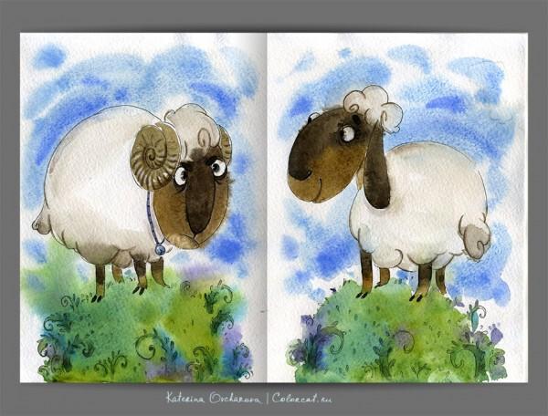 4-sheep-s-600x456.jpg