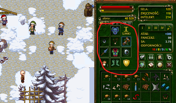 This is the Margonem game. Character equipment is in a red circle