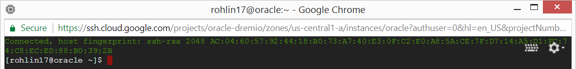 Using the browser-based terminal session to configure your intance