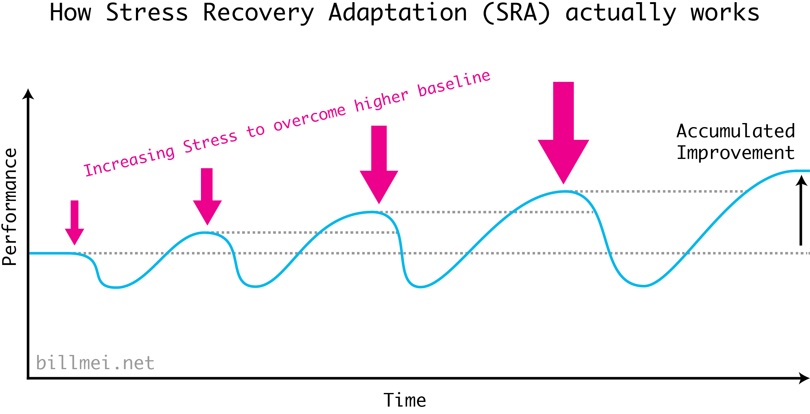 How the Stress Recovery Adaptation (SRA) cycle actually works. The second time after a workout, you've already achieved a higher baseline, so in order to overcome this to achieve an even higher baseline, you have to apply even more stress. Thus to accumulate improvement, the stress you apply is getting larger and larger over time.