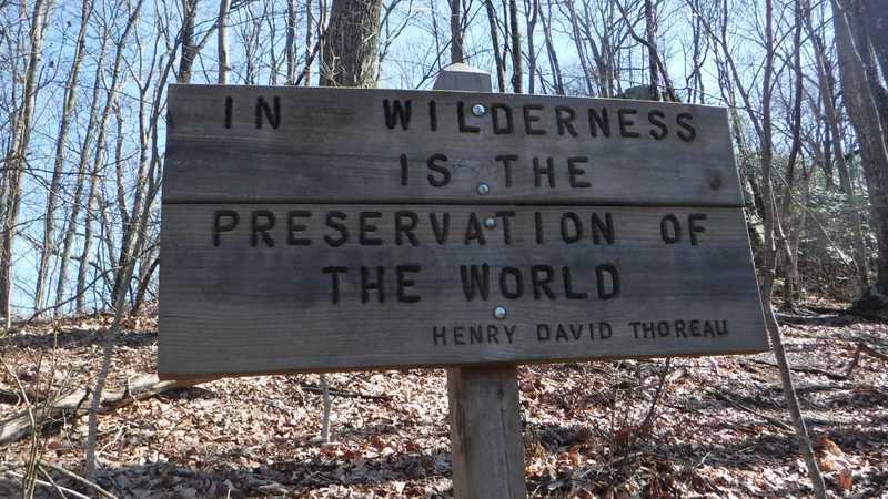 Thoreau sign