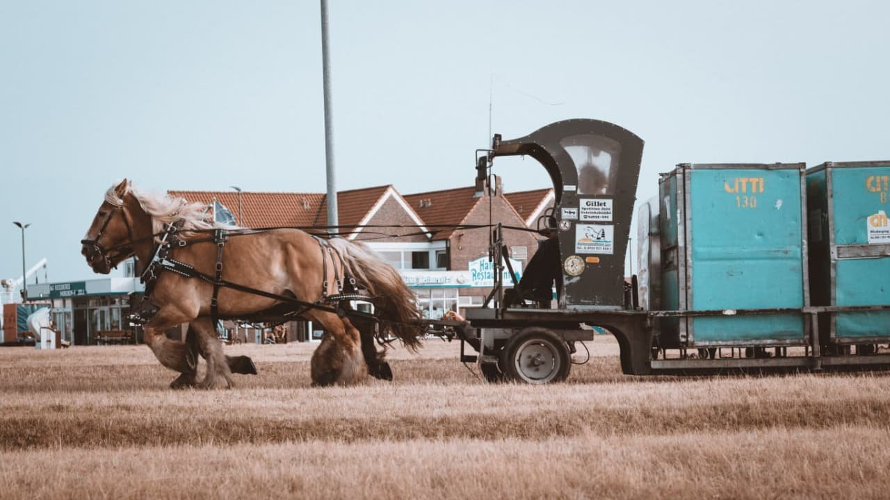 Some Clydesdale horses pulling a tailer