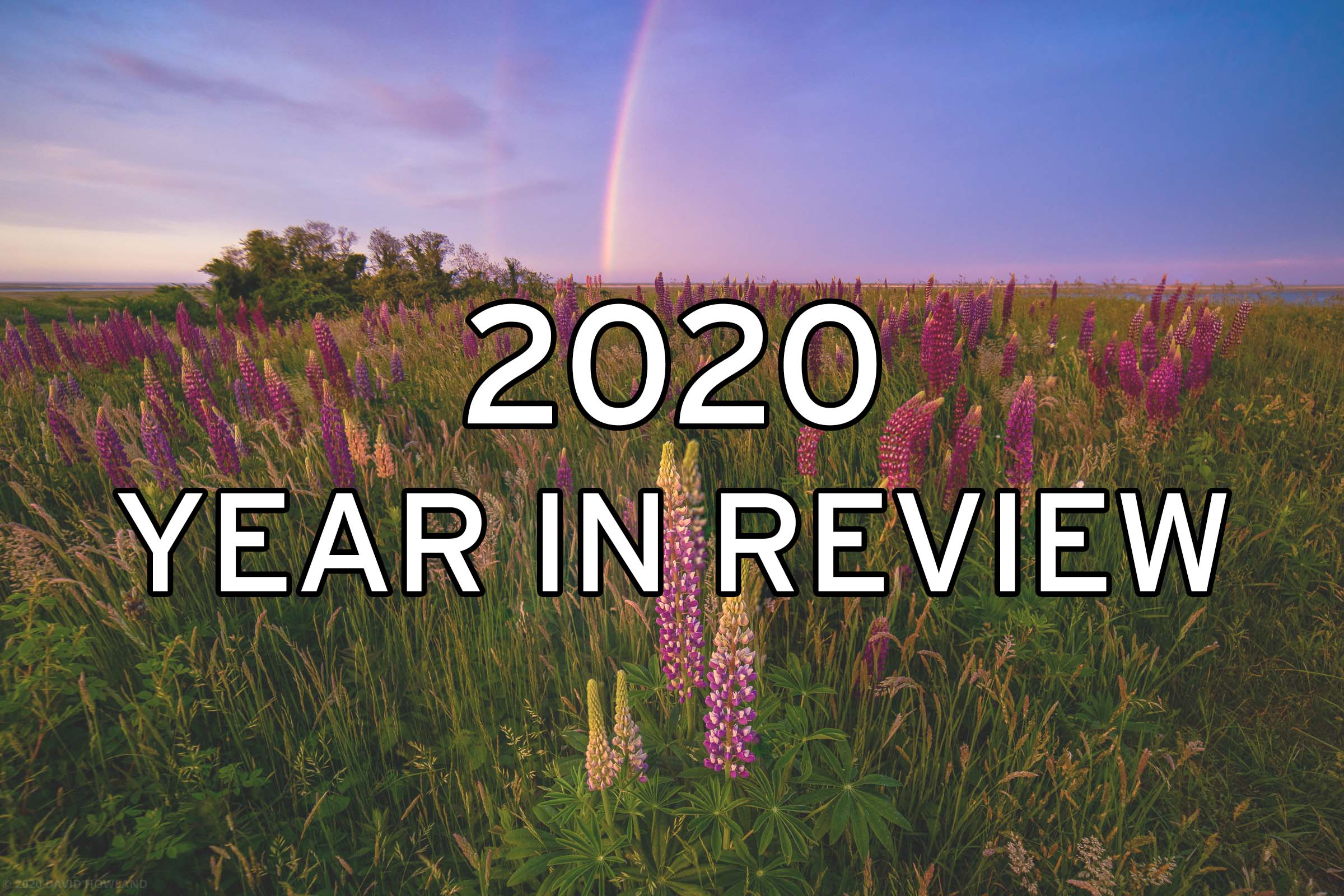 2020 In Review - My 13 Favorite Photos From Last Year
