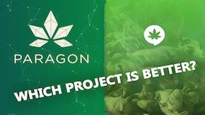 Bitshares cannabis token
