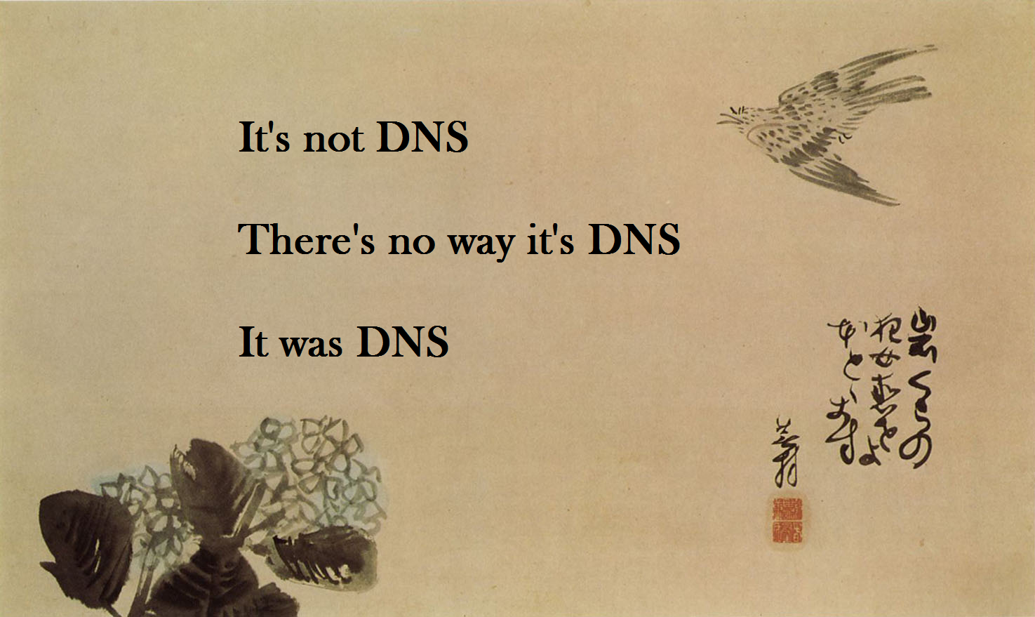 It's not DNS. It can't be DNS. It was DNS.