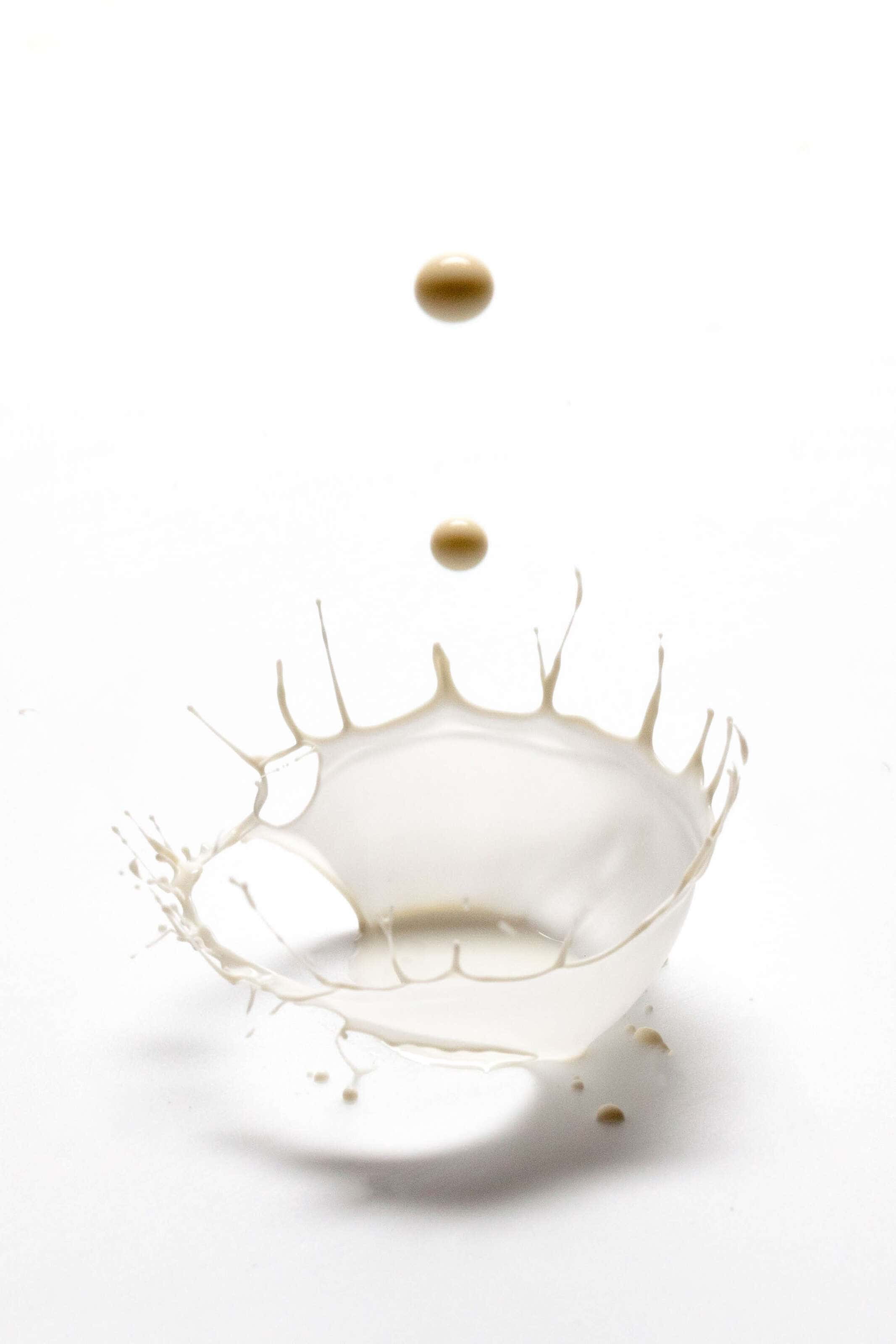 droplets of milk splashing on white top