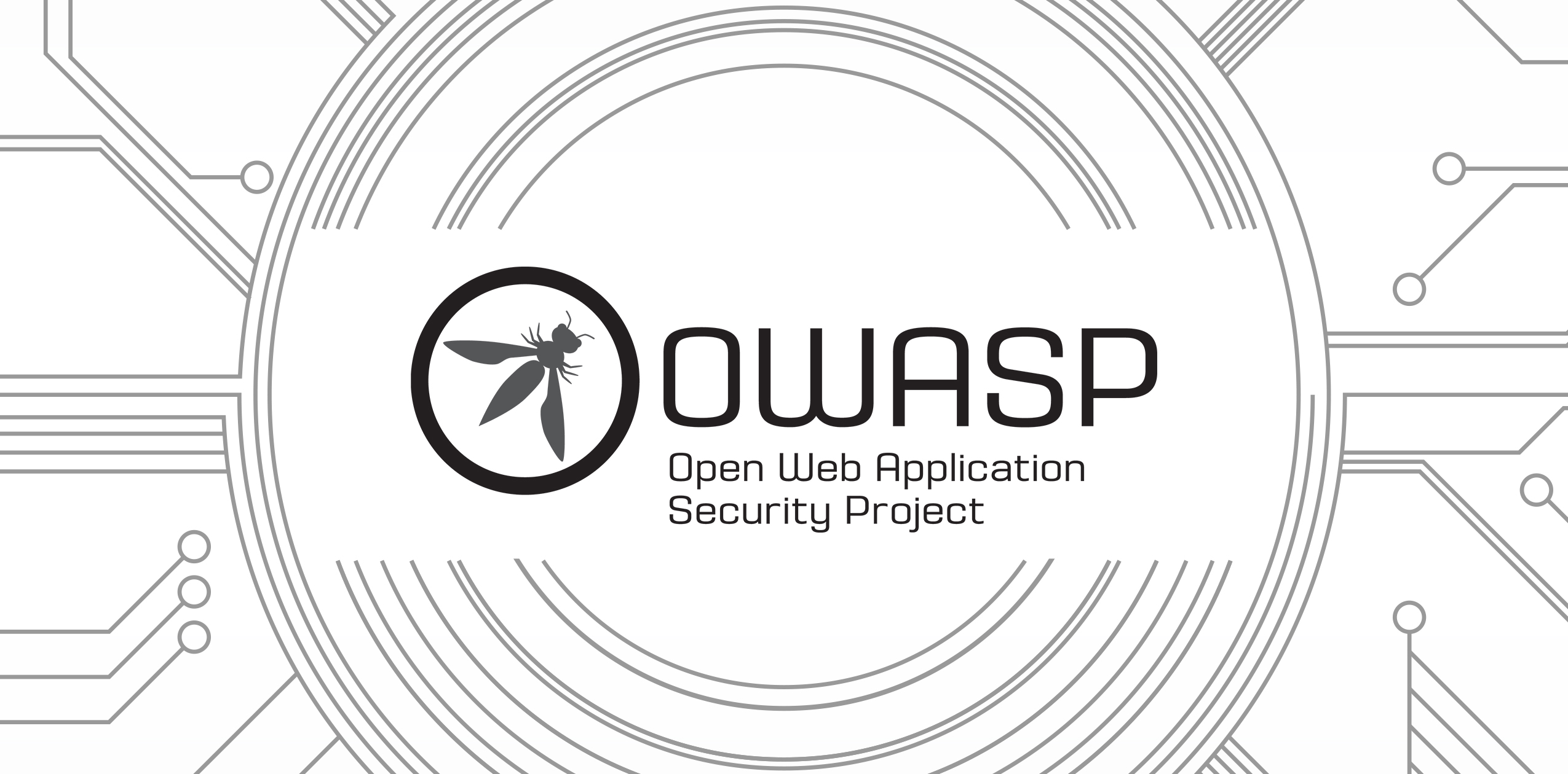 The Ultimate Guide To OWASP Security Checks