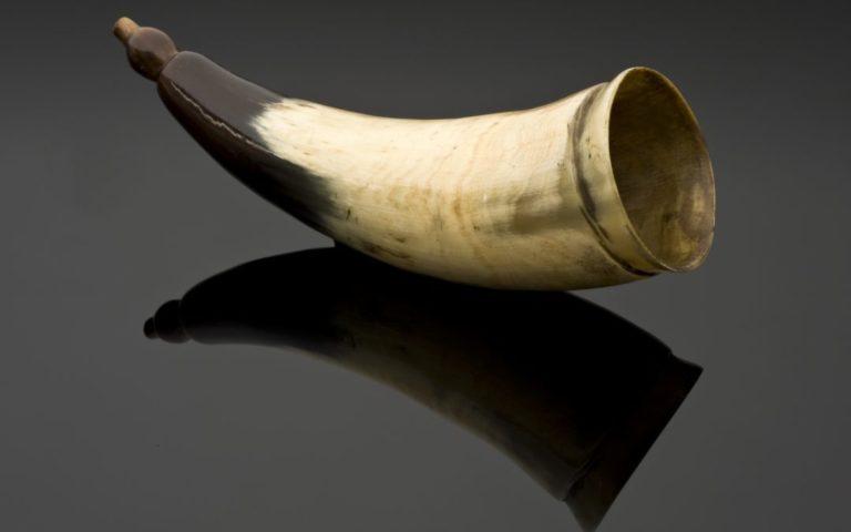antique looking horn