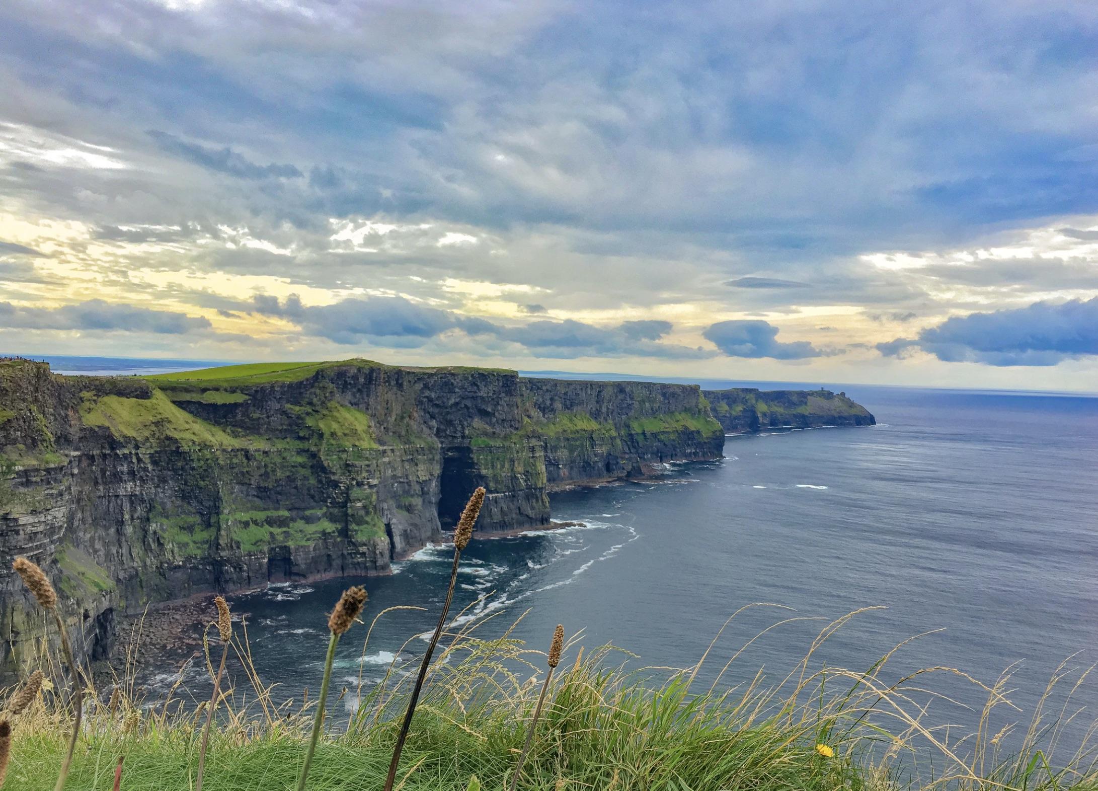 Ancient Irish Remedies vs. Modern Irish Remedies - Vaults Live