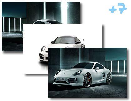 Porsche Carrera theme pack