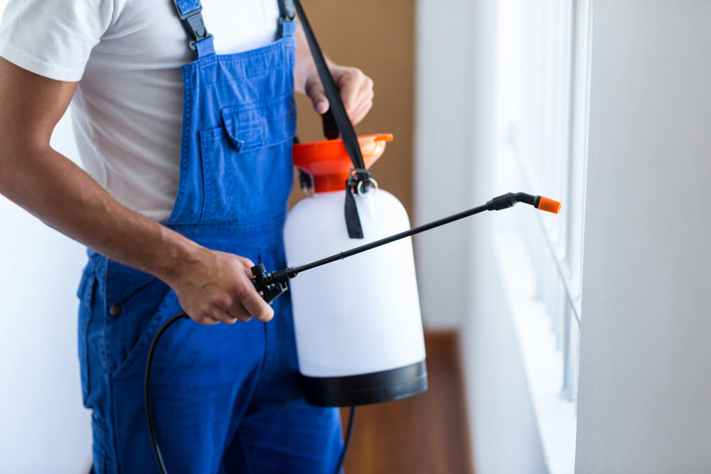 Pest Control Estimate