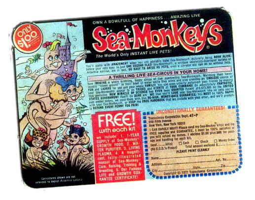 vintage sea monkey advertisement