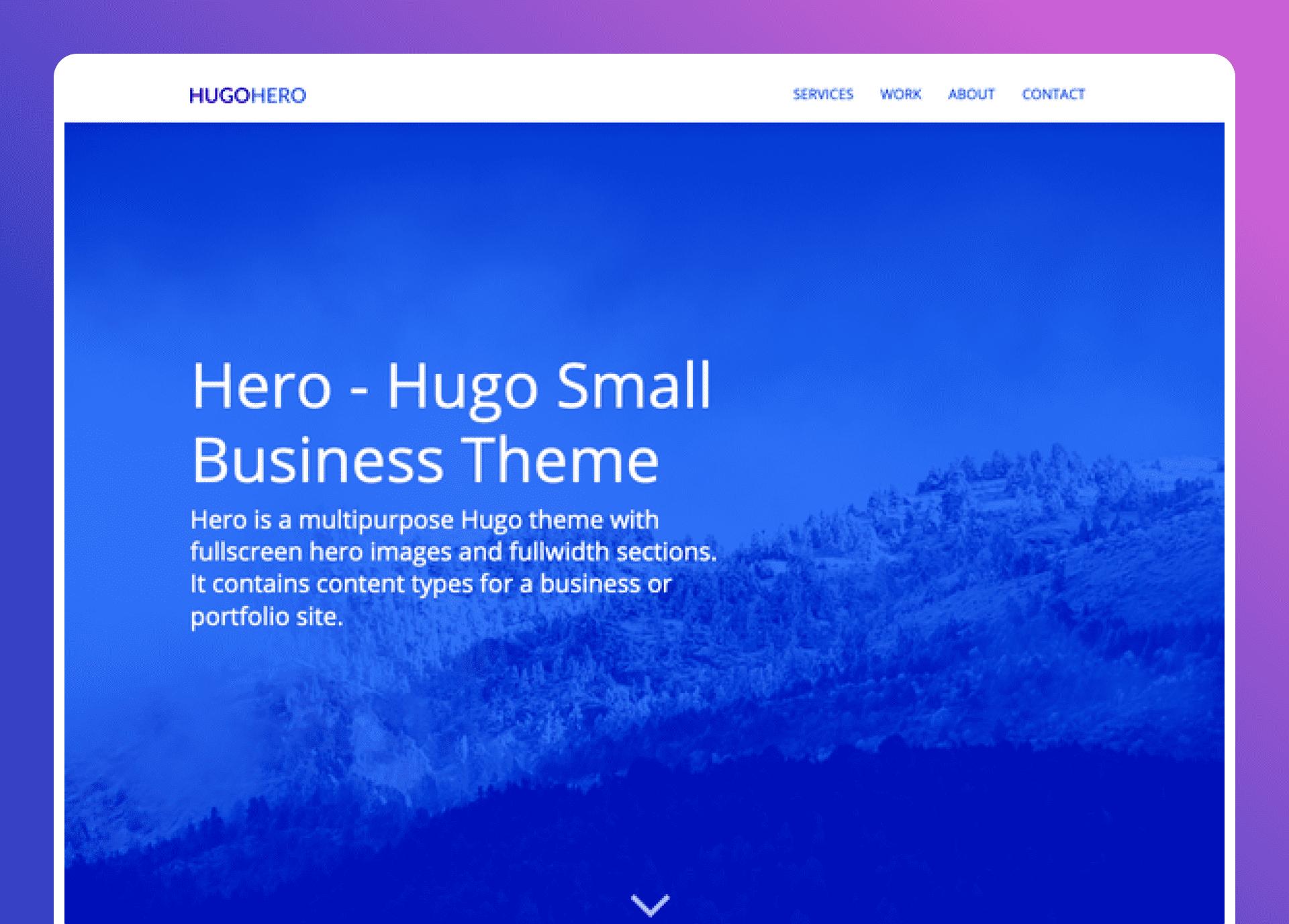 Hugo Hero   - cover
