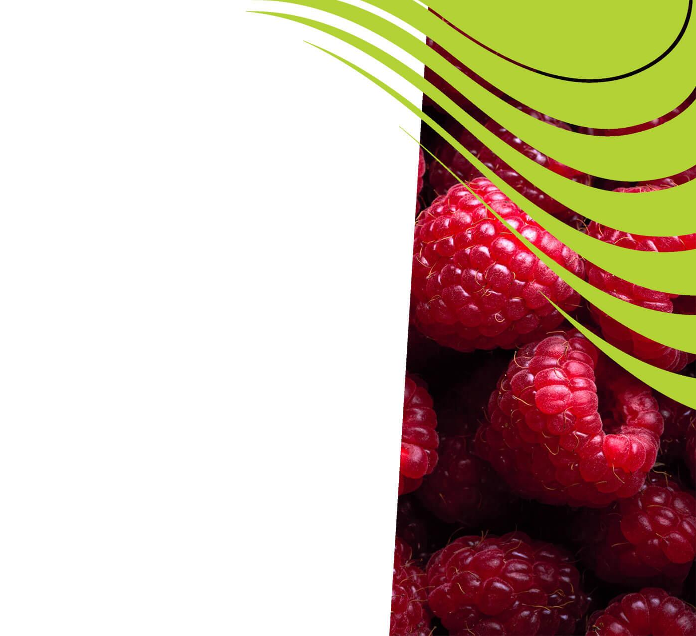 fertiliser for raspberries