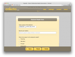 Enketo screenshot