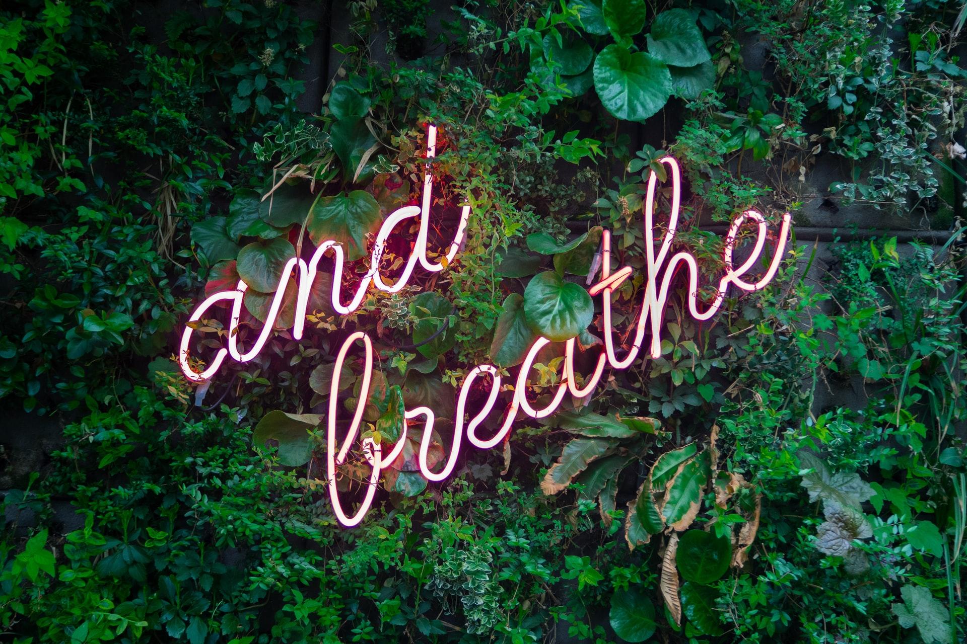 'And breathe' em fundo de folhas