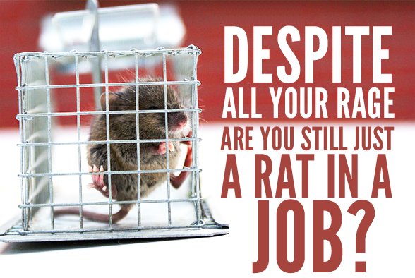 lab rat trapped in a cage