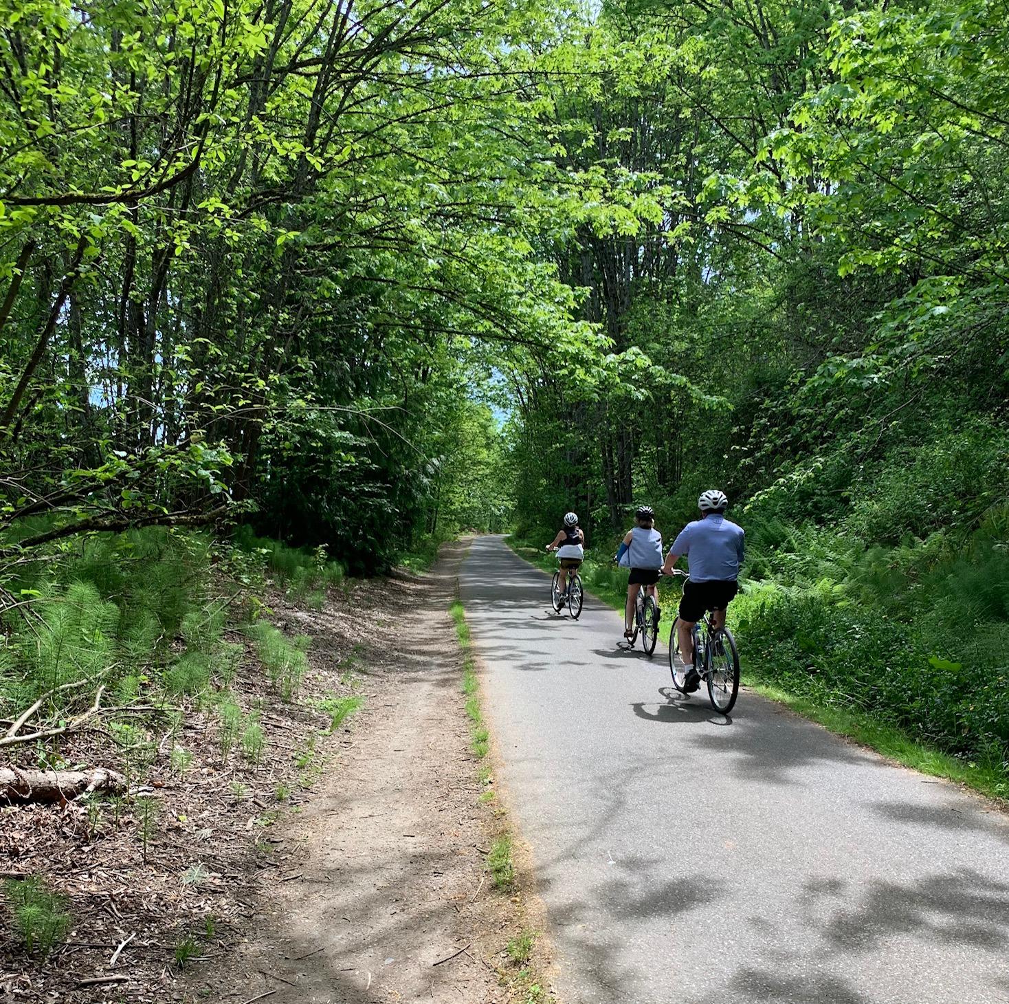 A photo of the bike tour on trail through trees.