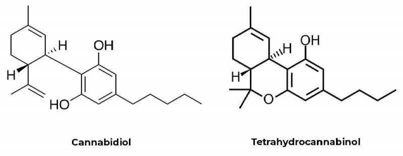 Chemical Composition of THC and CBD