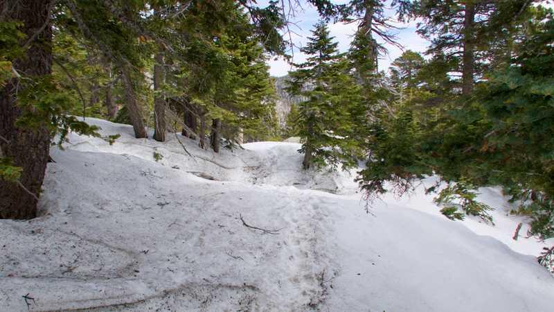 Snowy descent