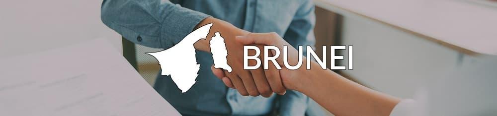Working in Brunei banner
