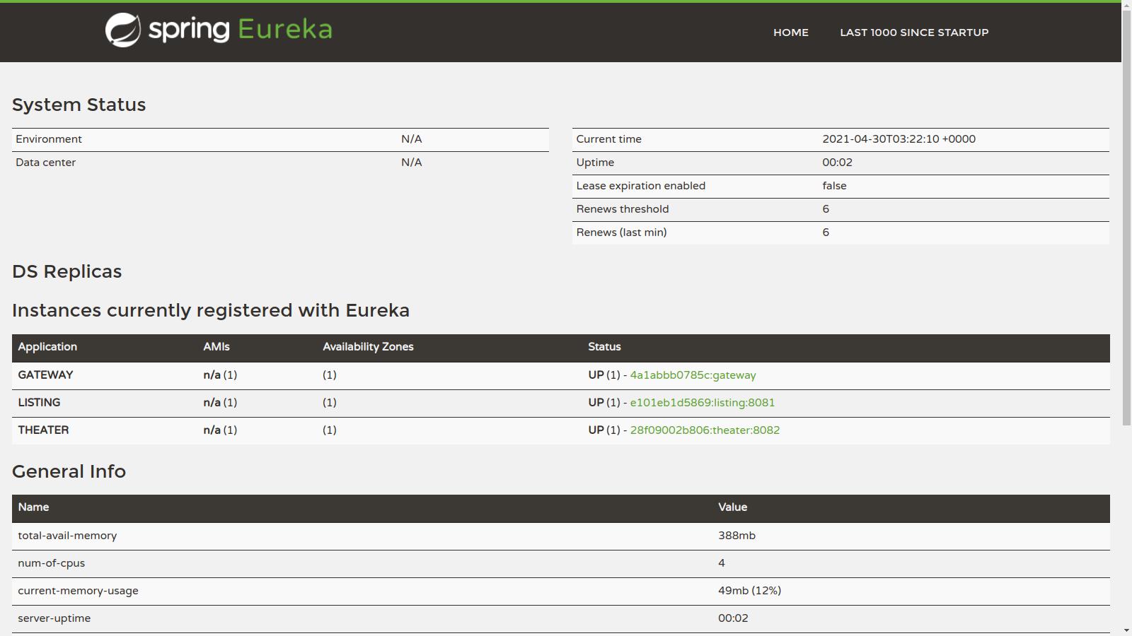 Eureka Instances Registered