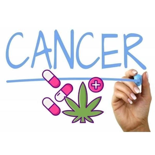 Cannabis Treatment Of Cancer In Australia