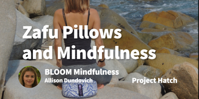 featured image thumbnail for post Spotting an Opportunity to Sell Zafu Pillows and Promote Mindfulness