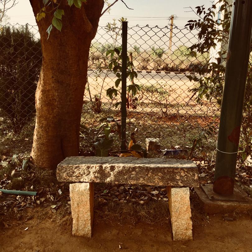 Lone Bench
