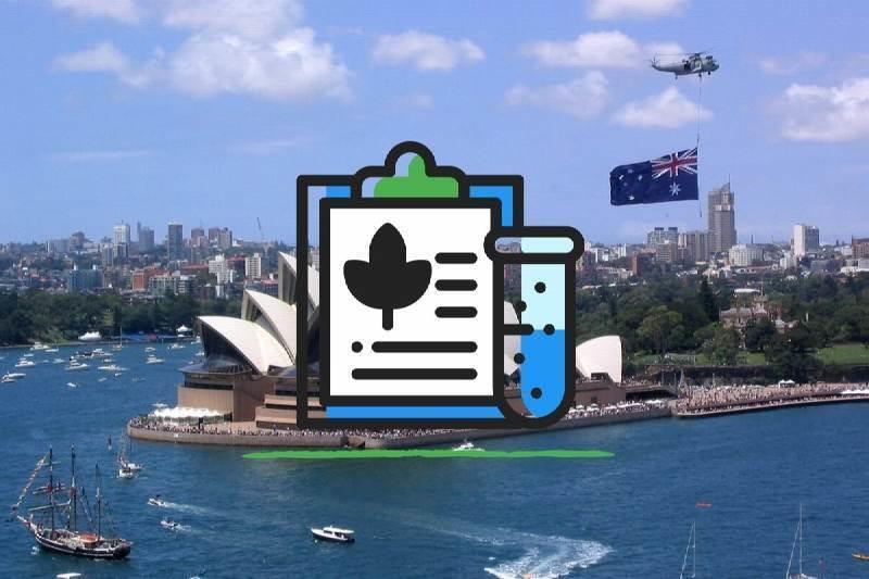 Recreational Cannabis Trial in Australia Nimbin and Canberra