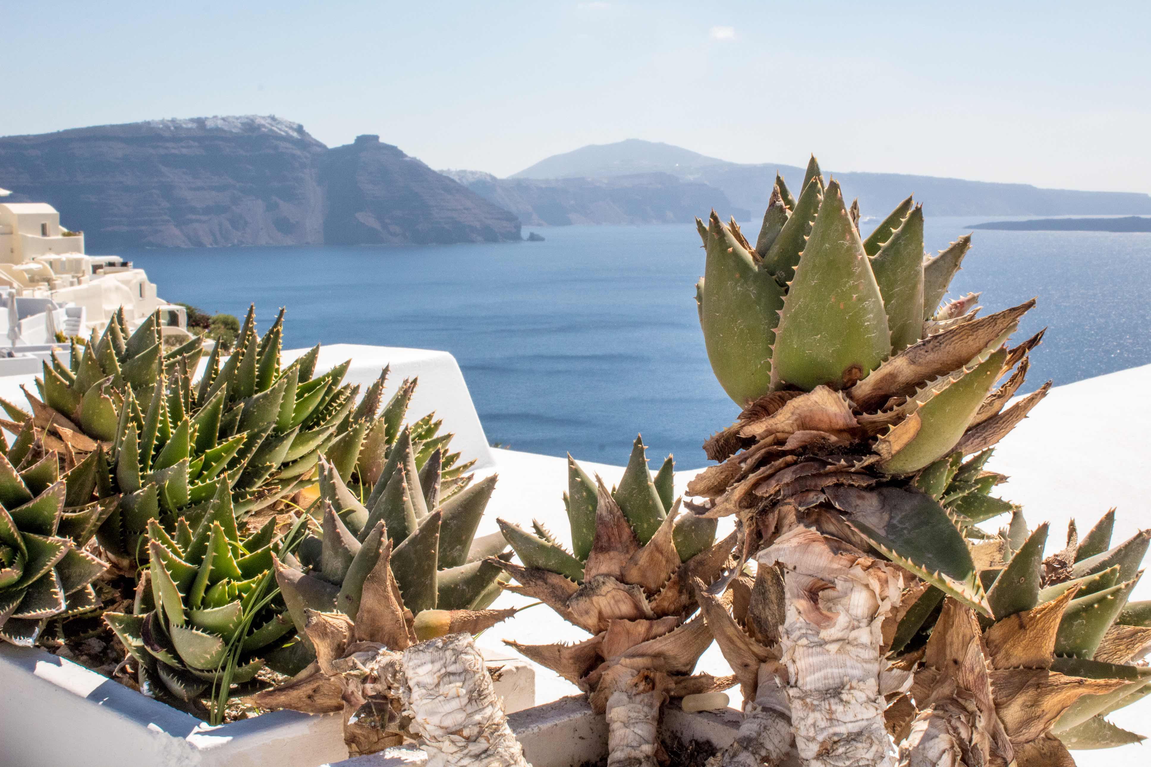 Top things to see and do in Santorini