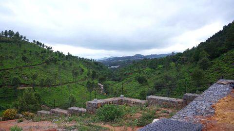 Birdseye view of Gymkhana