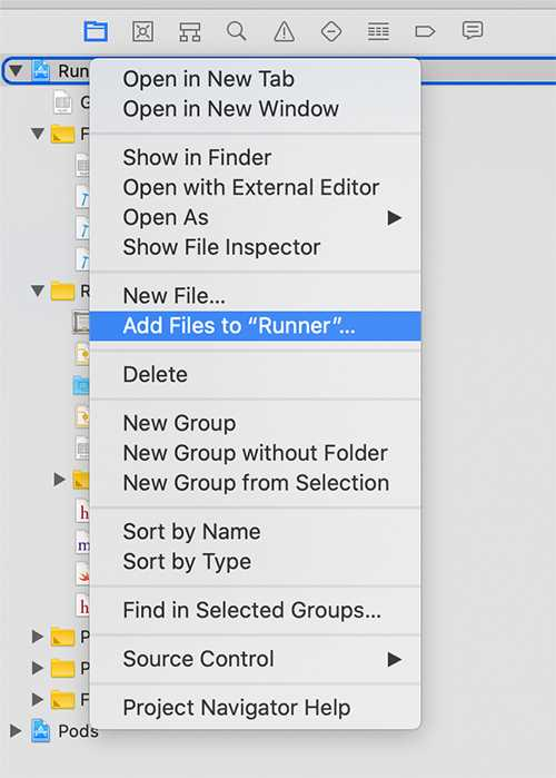 "Add the config file to your ""Runner"" project via ""Add Files to"""
