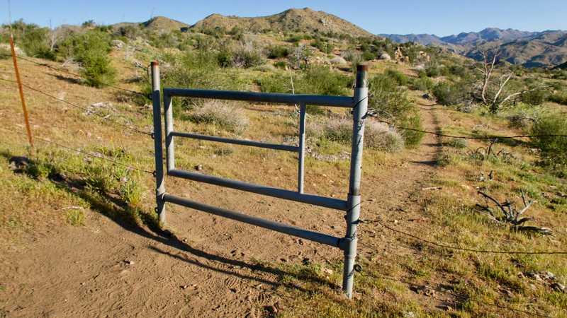 Pipe gate