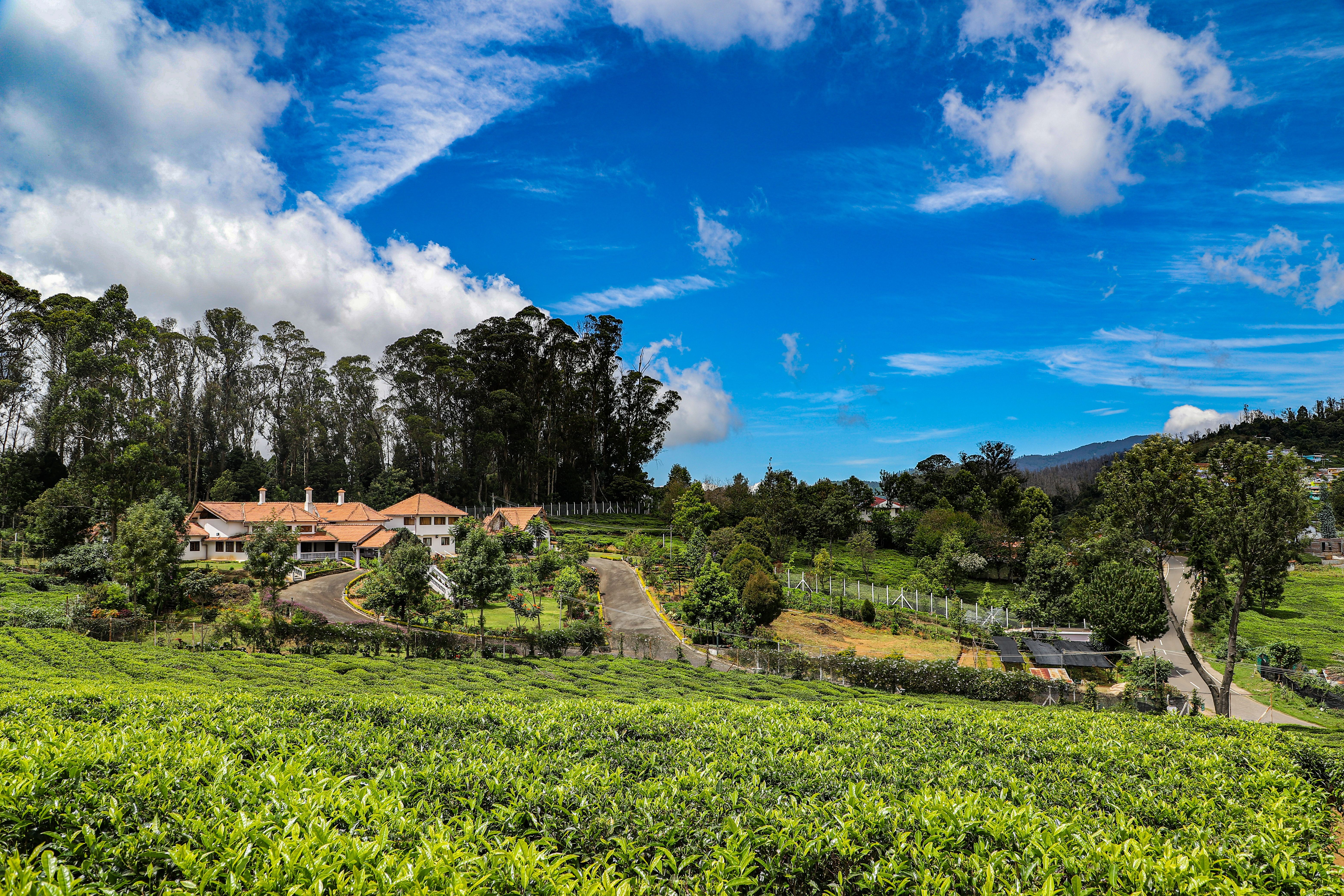 Colonial style House for Sale in Wellington, Coonoor