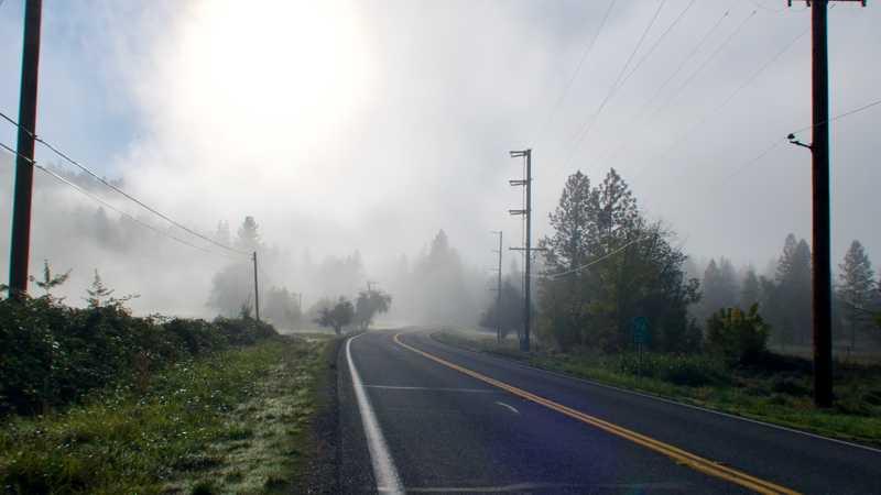 Fog in Seiad Valley