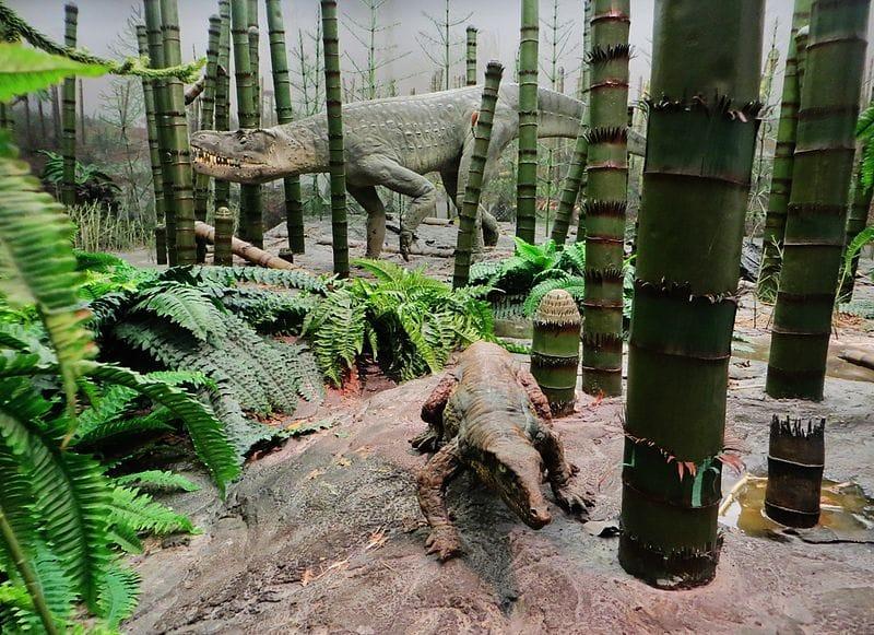 Diorama do período Triássica. Exposição no Museum am Löwentor, Stuttgart (Alemanha). Os animas aqui representados são um Paratipotórax em primeiro plano e Batrachotomus em segundo plano