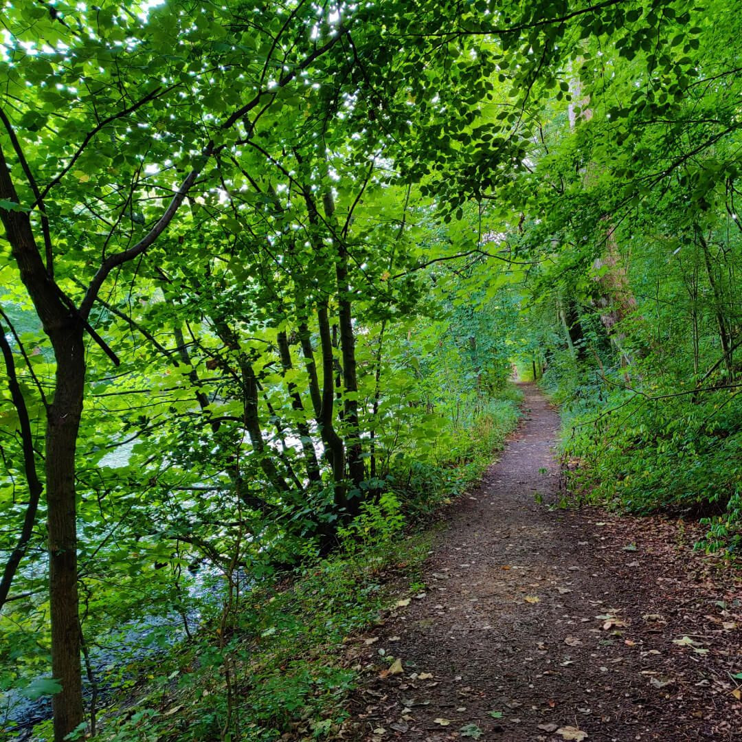 Farnley Hall Fish Pond muddy path