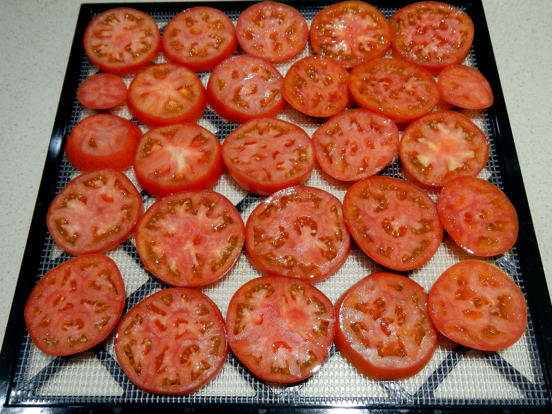 Tomato Slices on Dehydrator Tray