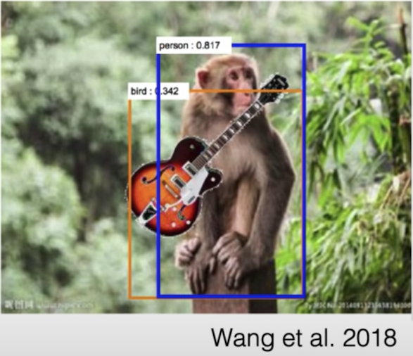 """A digitally altered image of a monkey in a tropical environment with a guitar. Surrounding the monkey is a rectangle with the label """"Person""""  for the purpose of highlighting an algorithm's identification of the monkey as a person. A smaller rectangle with the label """"Bird"""" shows the algorithm's identification of the guitar as a bird."""