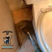 San Diego pet Stain and odor removal