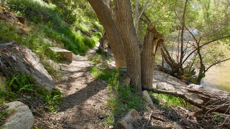 Trail along Mojave River