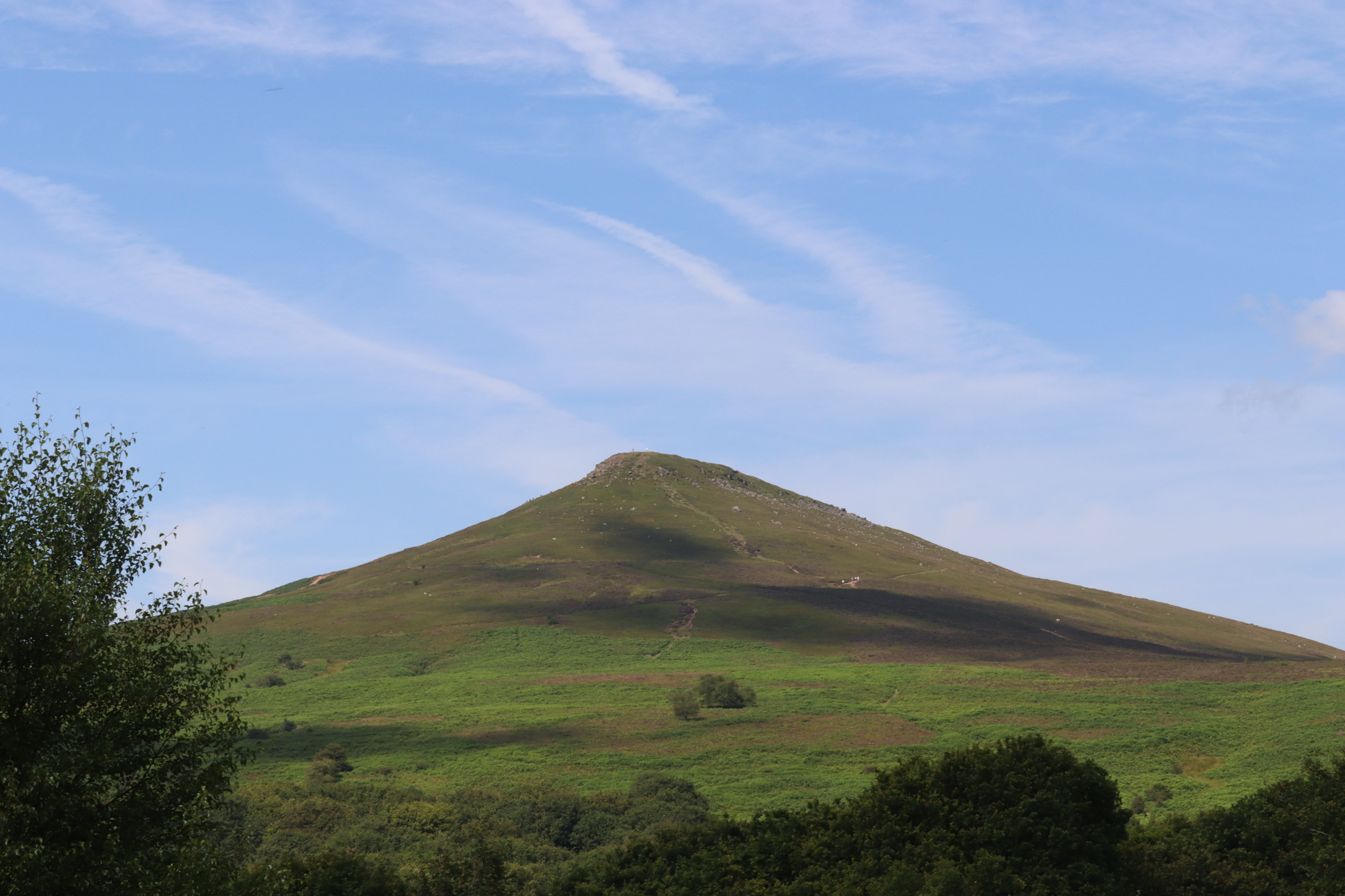 Sugar loaf mountain with trees in the foreground.