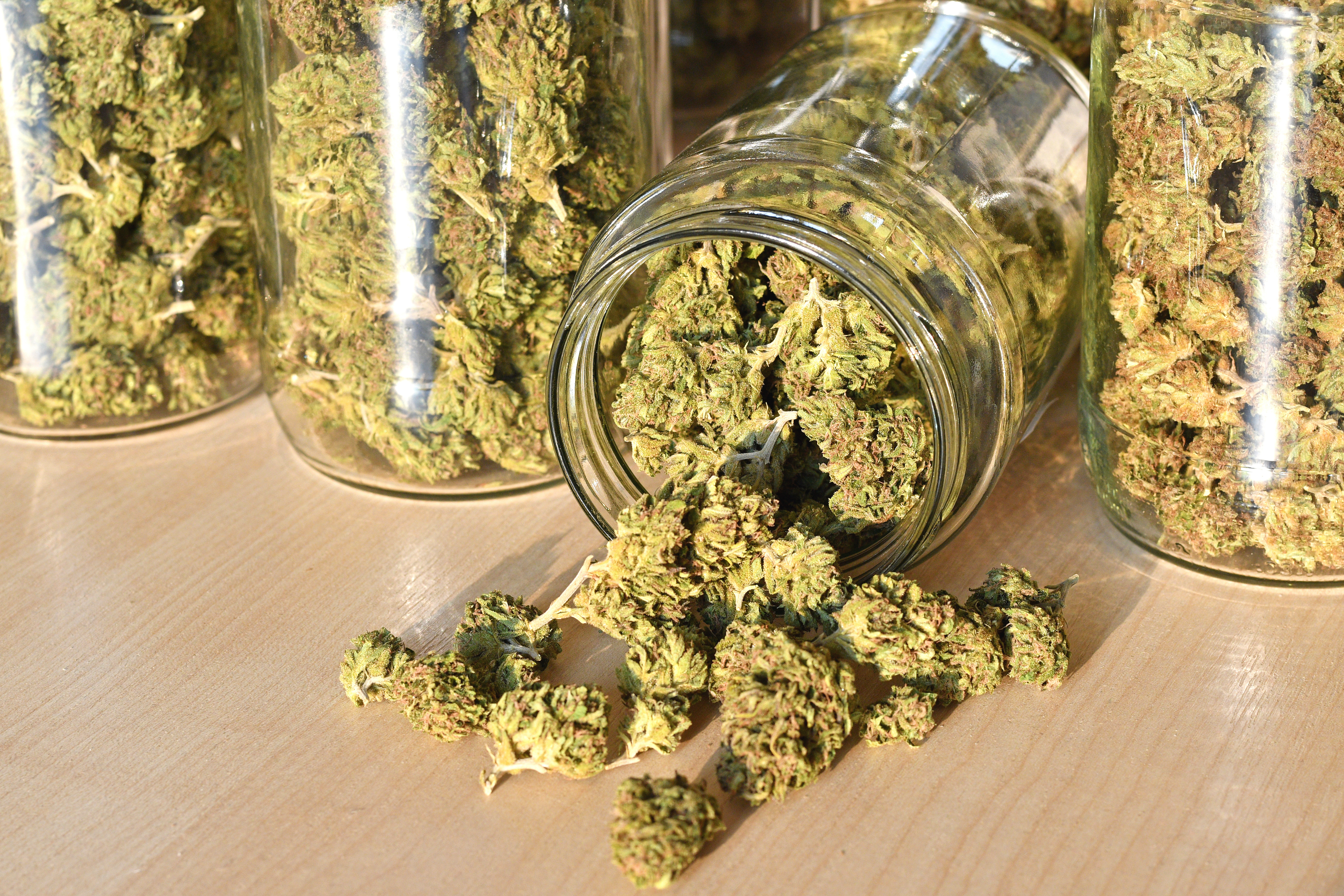 Cannabis Stored in Glass Jars