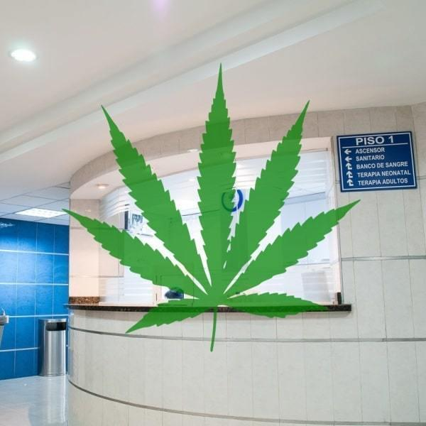 Cannabis Medical Clinics In Australia