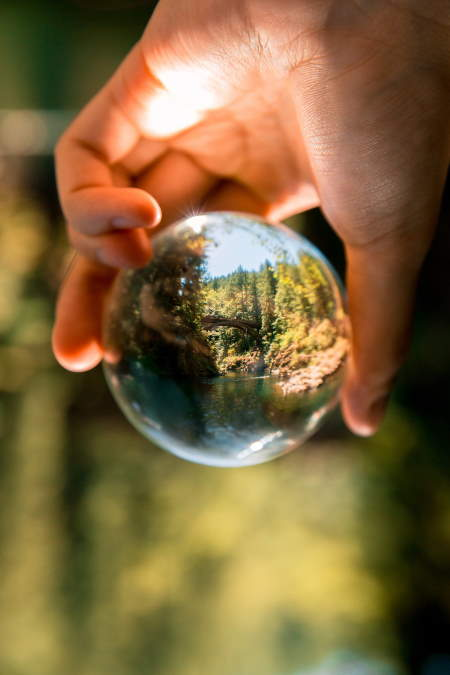 A man holding a sphere showing the earth and the environment, with some greenery in the blurred background too.